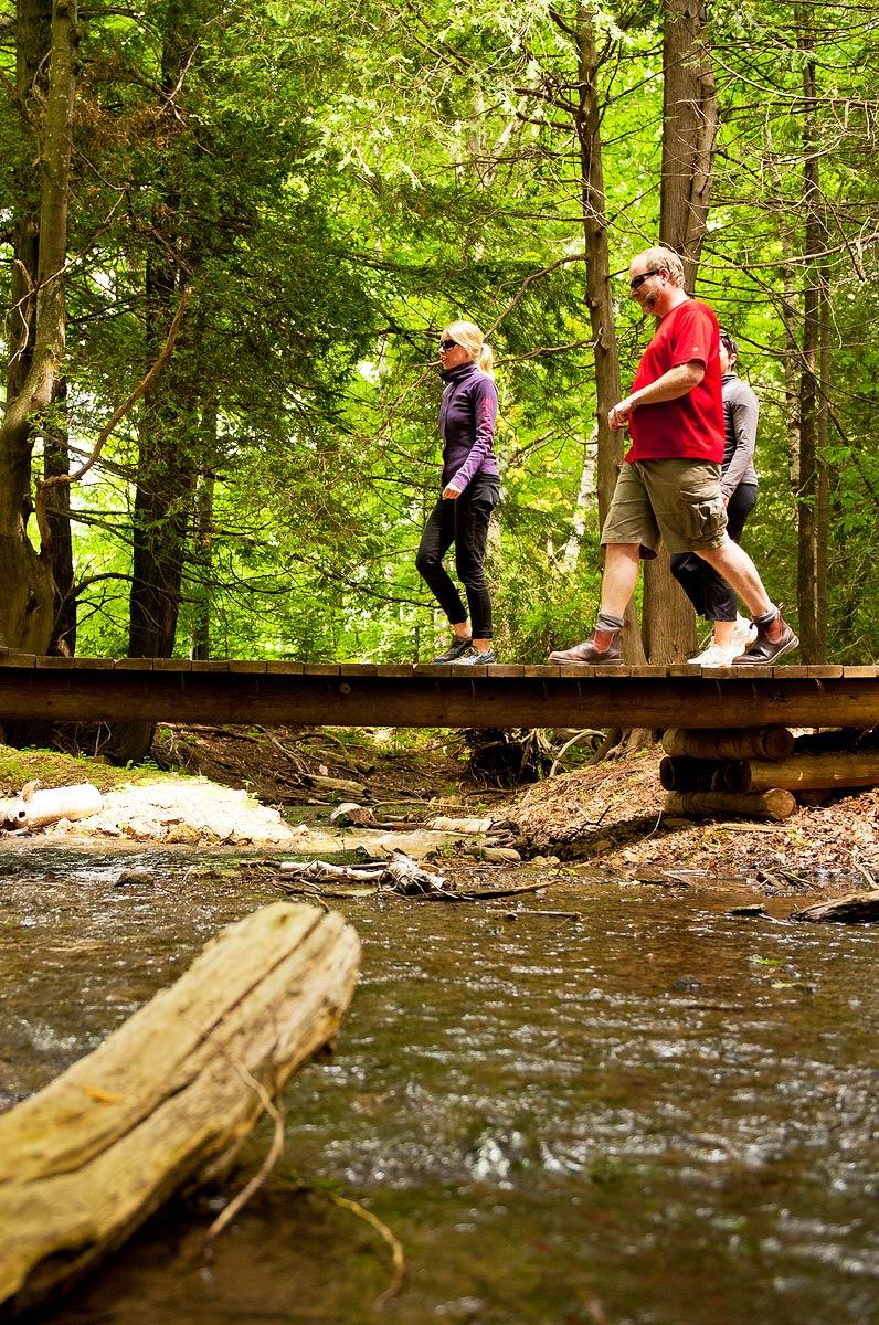 8. Take a Scenic Hike