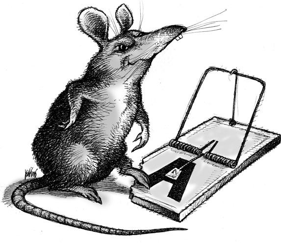 A drawing of a rat in a trap.