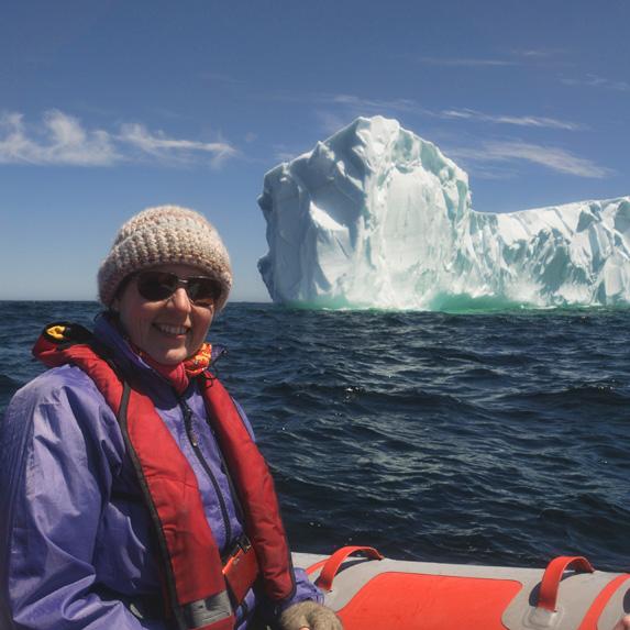 Icebergs in Canada