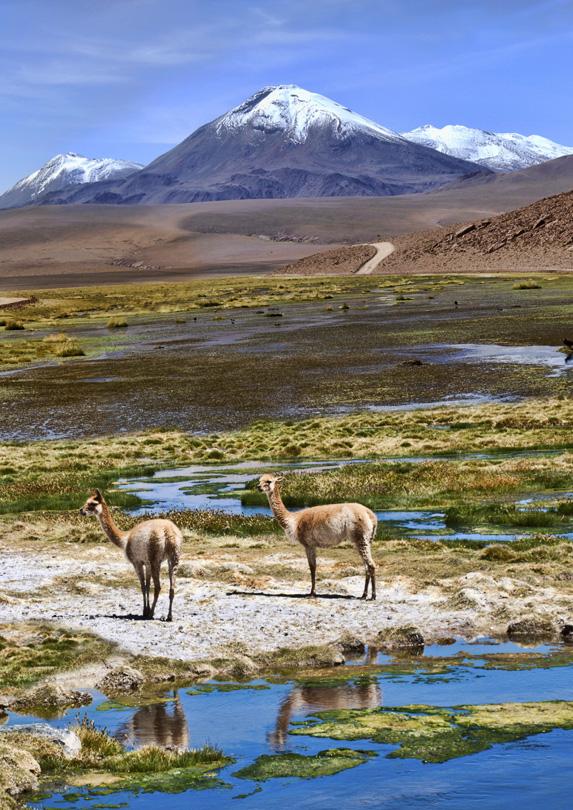 retire in Chile