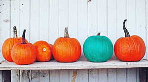 ICYDK, Here's The Meaning Behind Teal Pumpkins