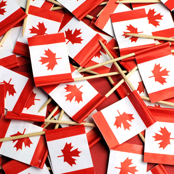 dollar store Canadian flags