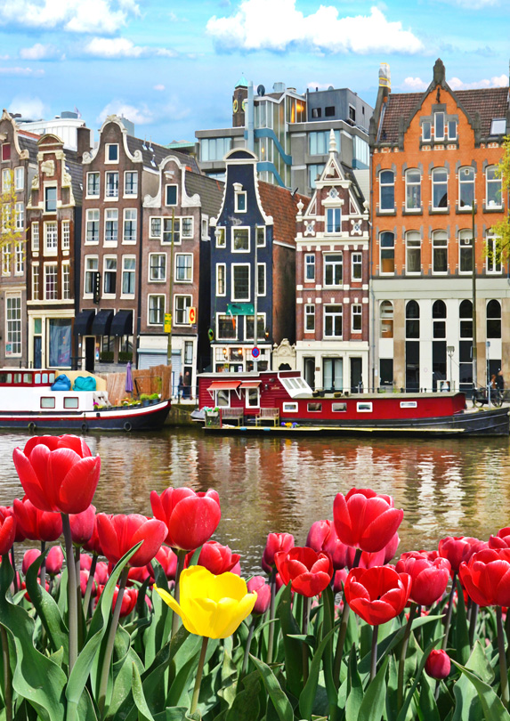 amsterdam-tulips-and-canals