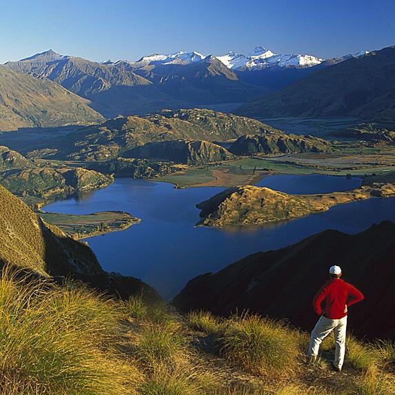 8. New Zealand