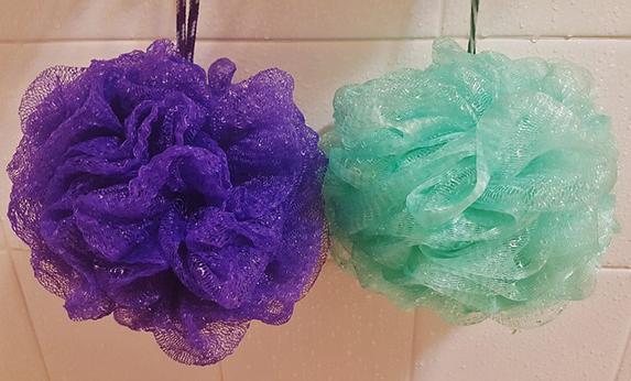 shower sponges