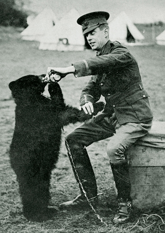 2. Winnie-the-Pooh is Named After Winnipeg