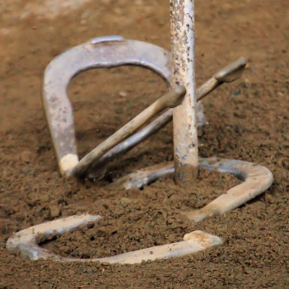 Horseshoes and a post