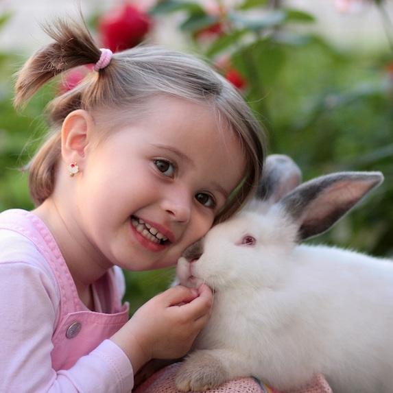 Rabbit Lifespan