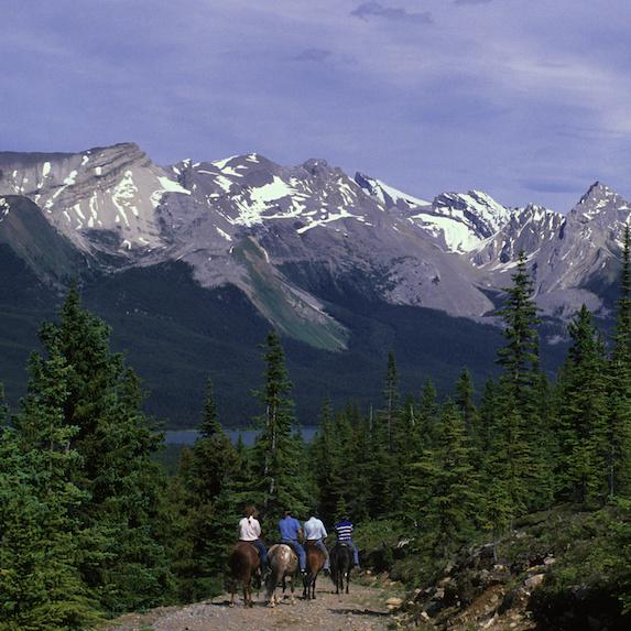 Trail riding in the Alberta Rockies
