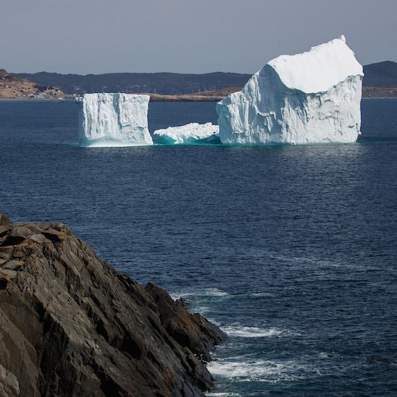 icebergs in Newfoundland