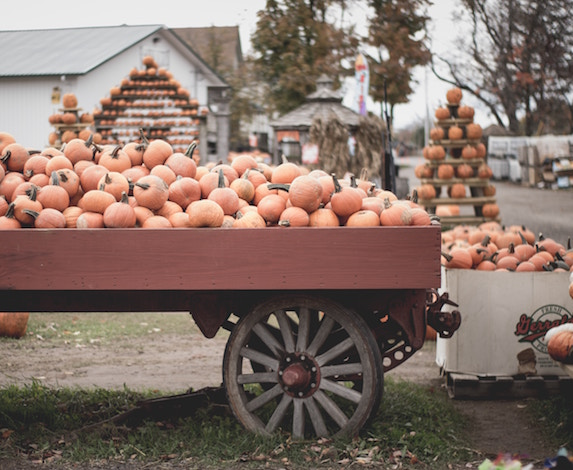 Pumpkins on a wagon