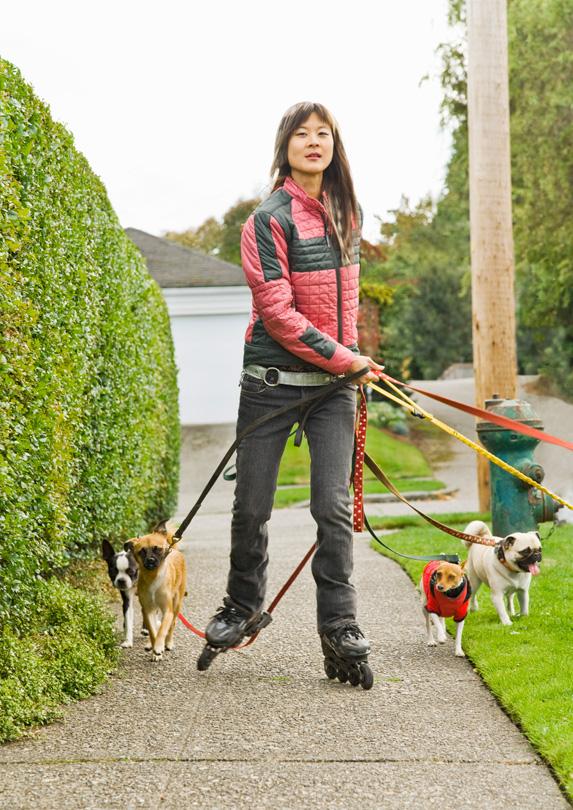 Woman walking many dogs
