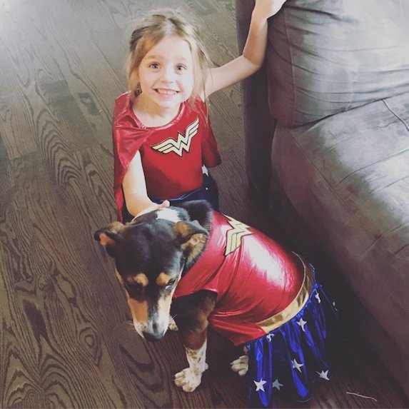 best-halloween-pet-costumes-wonder-woman