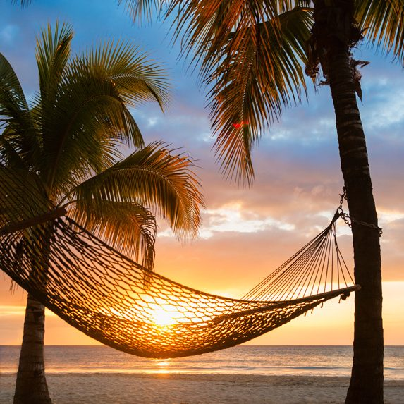 Hammock between two palm trees in Jamaica