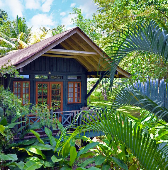 A private villa suite sits nestled amongst a lush garden of palm tress and other tropical foliage
