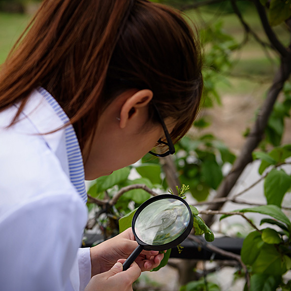 Woman holding magnifying glass to plant
