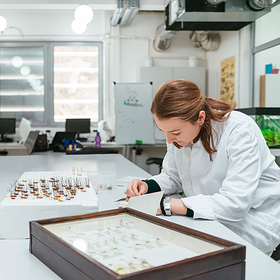 Woman in lab looking at slides