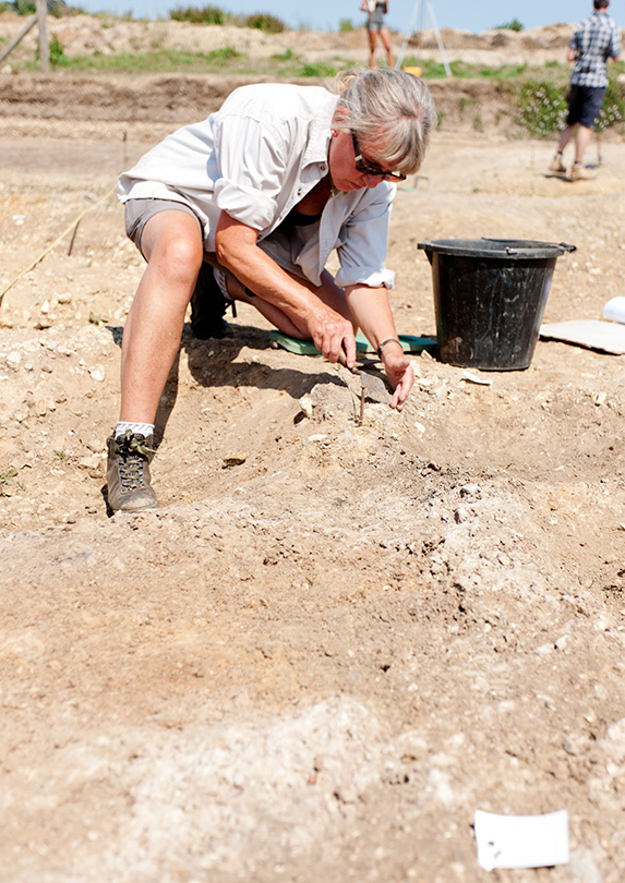 Archaeologist digging