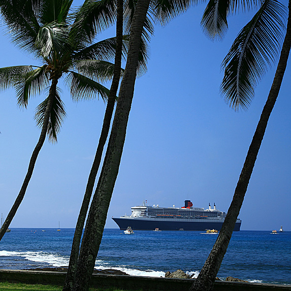 Cruise ship near shore, palm trees close up