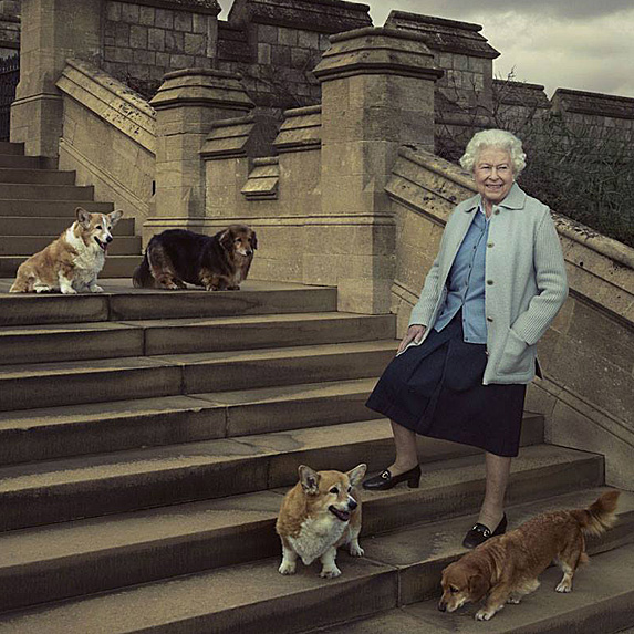 Queen Elizabeth II and her four dogs in 2016
