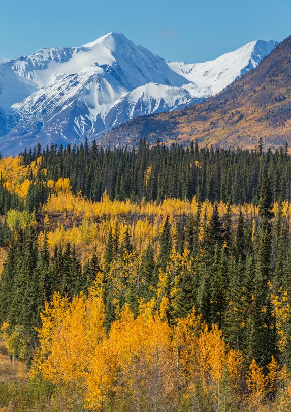 Pikatak Nunatak, Kluane National Park and Preserve, Yukon