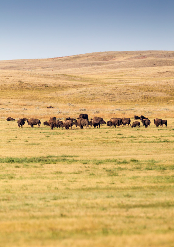 Valley of 1,000 Devils, Saskatchewan