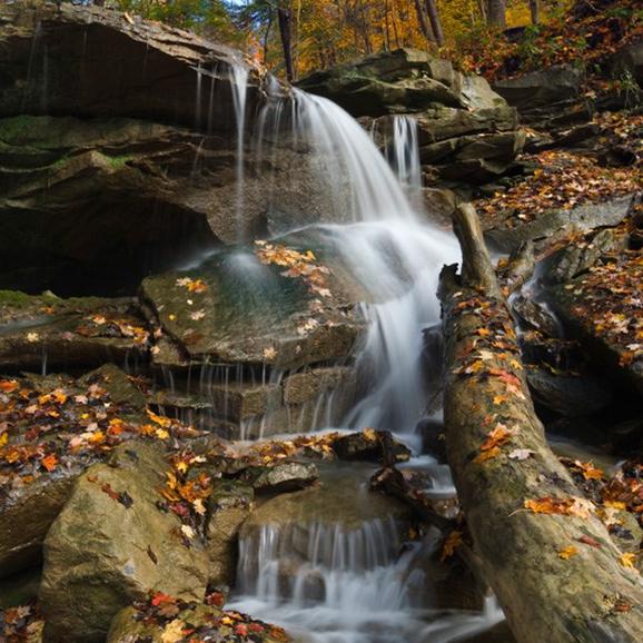 A waterfall at fall