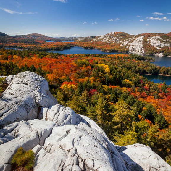 View at the top of a cliff, overlooking the changing fall colours of the trees below