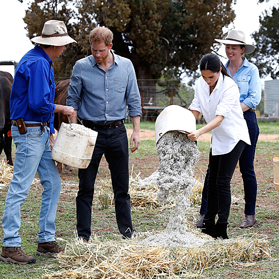 Harry and Meghan working on a farm in Australia