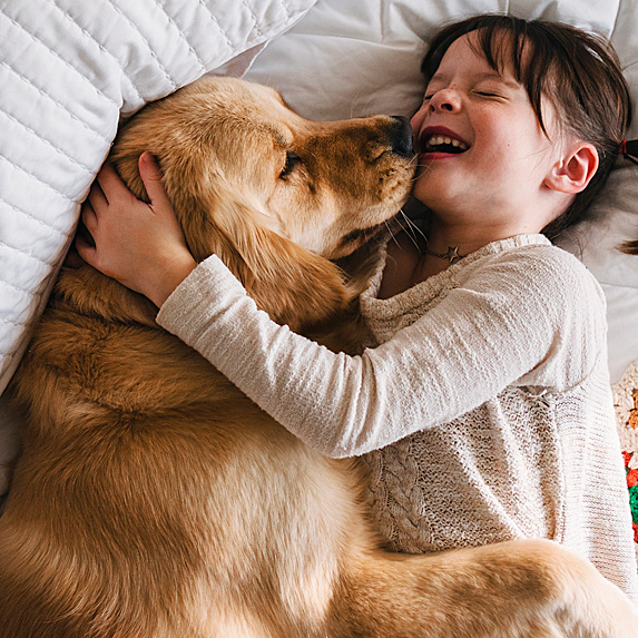 Girl cuddling and laughing on bed with golden retriever