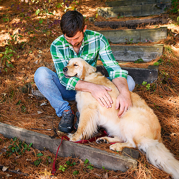 Golden retriever nuzzling young man in the park