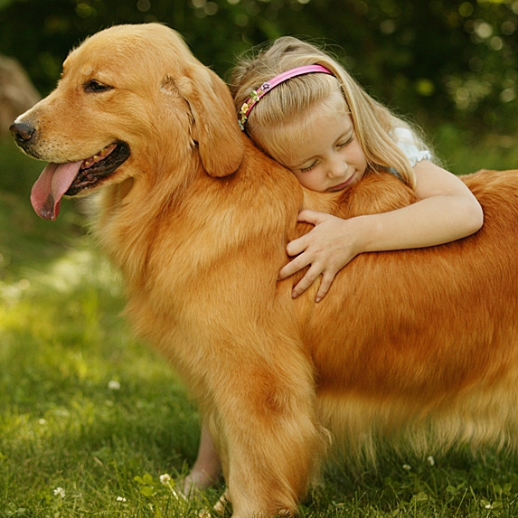 Girl hugging back of big golden retriever