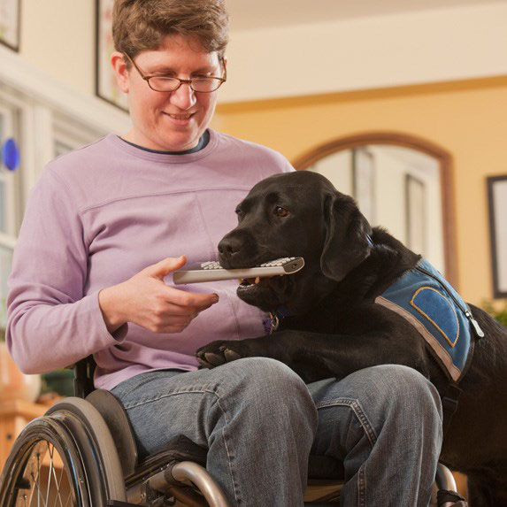 a man in a wheelchair with his dog