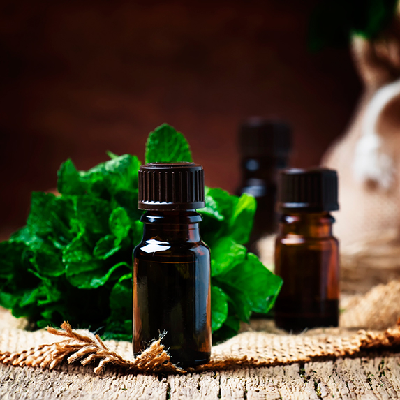 Bottles of peppermint essential oils
