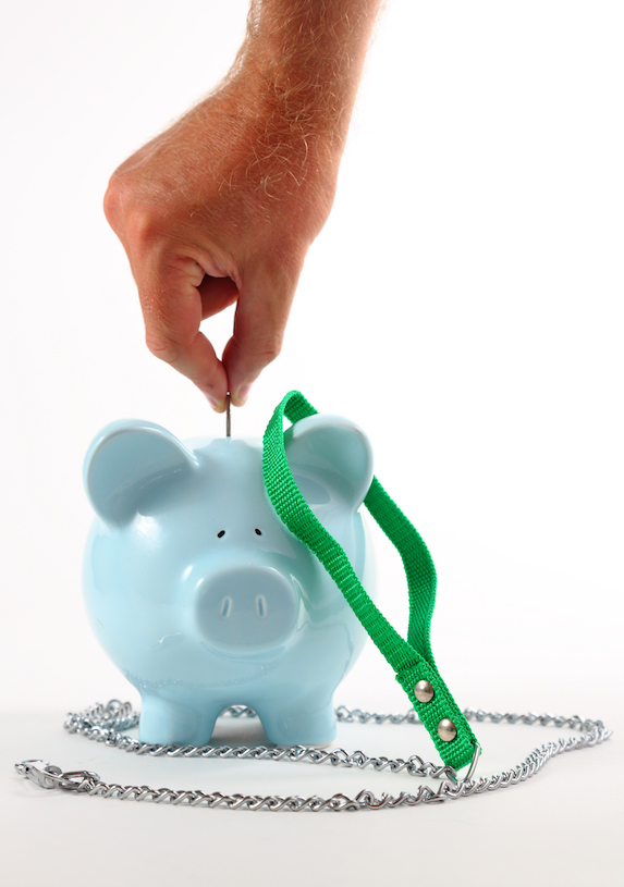 Man puts a coin into a piggy bank that is decorated with a collar and leash
