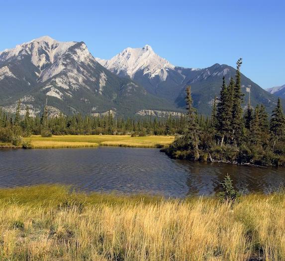 Pocahontas Ponds, Alberta