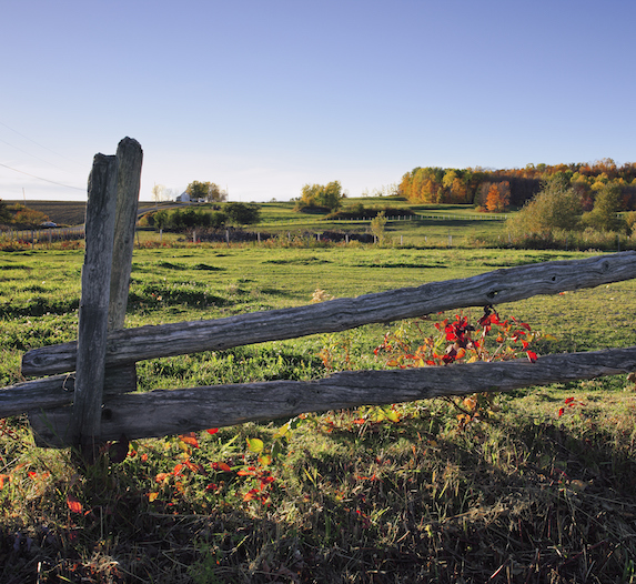 Farmland and wood fence in Saint-Louis-du-Ha!Ha!, Quebec