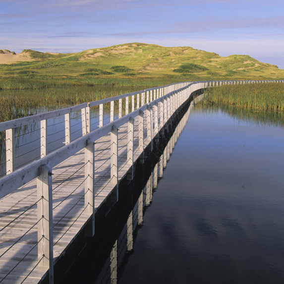 Prince Edward Island National Park: $100