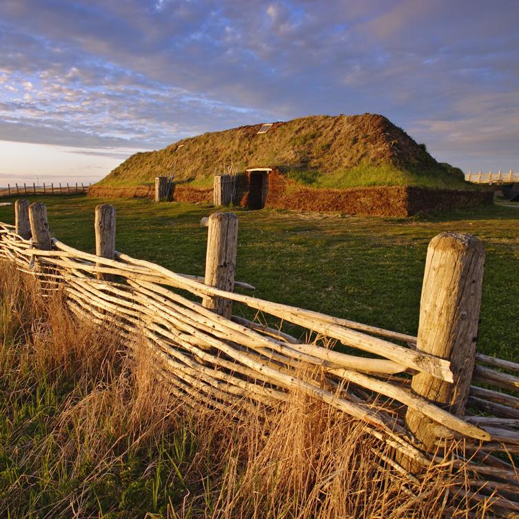 L'Anse Aux Meadows, Newfoundland: $75