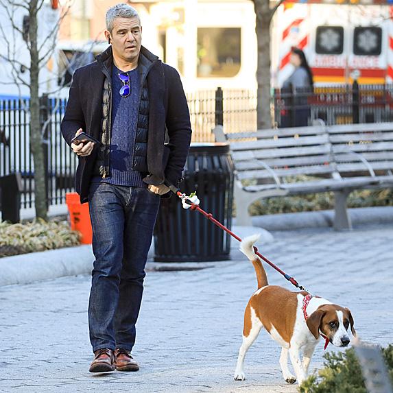 Andy Cohen and dog Wacha