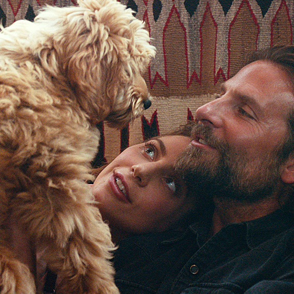 Bradley Cooper, Lady Gaga and dog Charlie