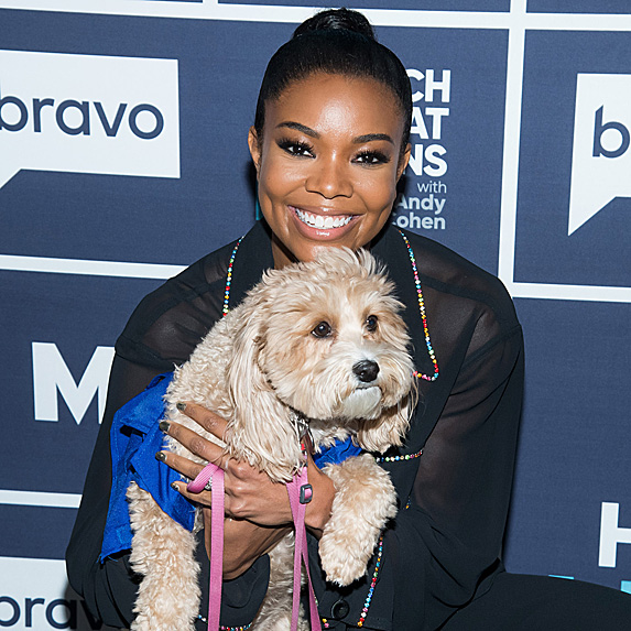 Gabrielle Union and dog Bobby Hurley