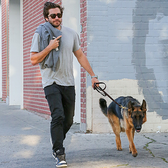 Jake Gyllenhaal and dog Atticus Finch