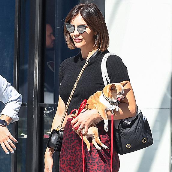 Katharine McPhee and dog Wilmer
