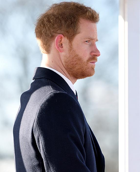 Profile of Prince Harry