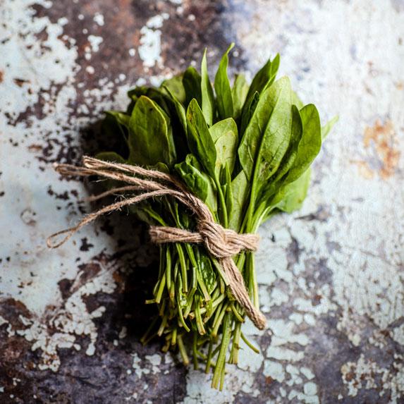 magnesium spinach