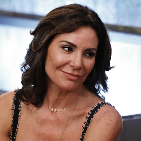 Luann de Lesseps: arrested for disorderly intoxication and assaulting an officer
