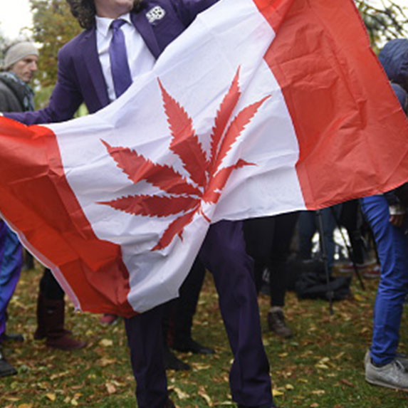 Marijuana leaf on a flag with Canadian colours