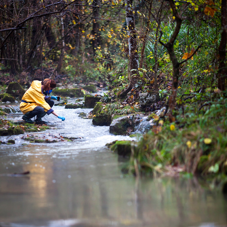 Ecologist working in a stream