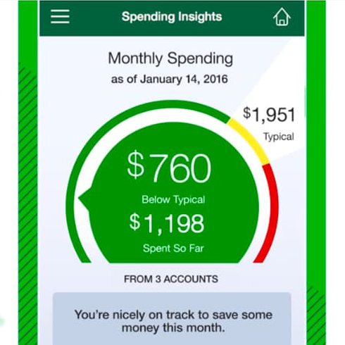 Monthly spending screenshot with pie chart of money spent and gained